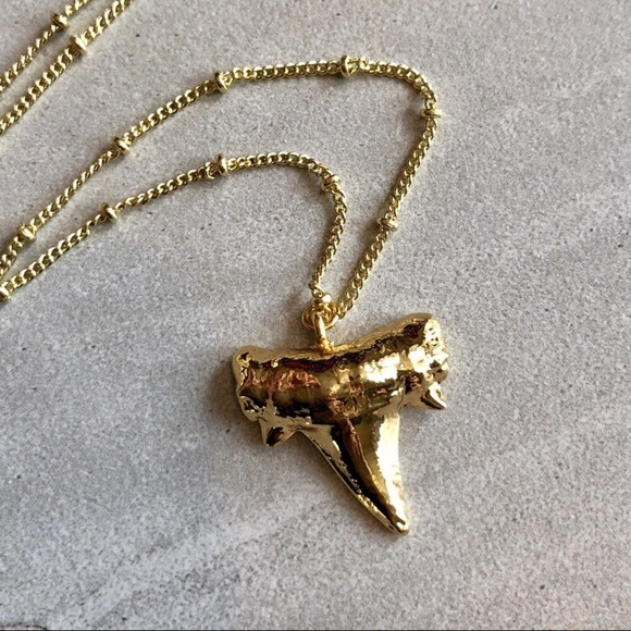 3a955e6a1a Gold Shark Tooth Necklace